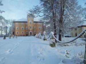 slottet-vinter